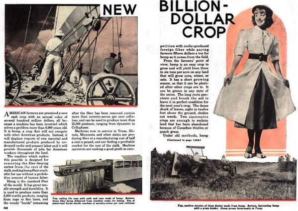 HEMP Billion Dollar Crop