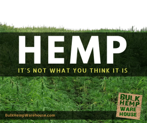 Hemp - It's not what you think it is