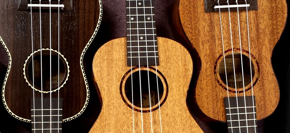 Different types of Ukeleles