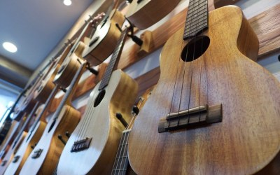 Best Ukulele Brands You Can Find in the Market for 2018