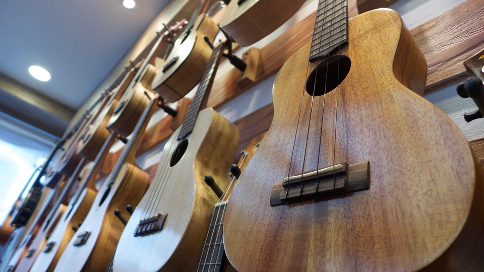 best Ukelele brands