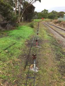 Another 40 meters of rail completed today by the team. 30 meters to go till we have 5 inch gauge all the way around.
