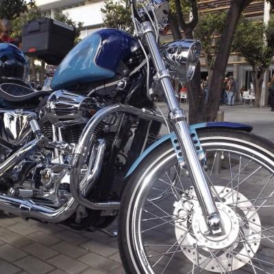 Harley 72 (6)