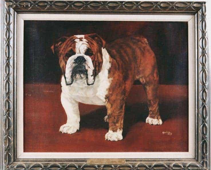 Best of Breed: Ch. Hetherbull's Arrogance