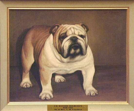 Best of Breed: Ch. Bayside Doubloon