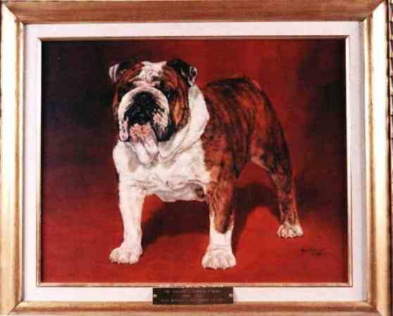 Best of Breed: Ch. Baltic's Tough E'Nuff