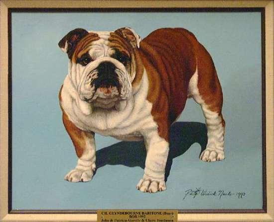 Best of Breed: CH Glyndebourne Baritone