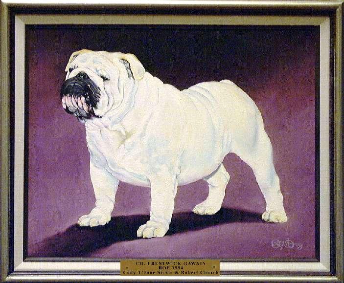 Best of Breed: CH Prestwick Gawain