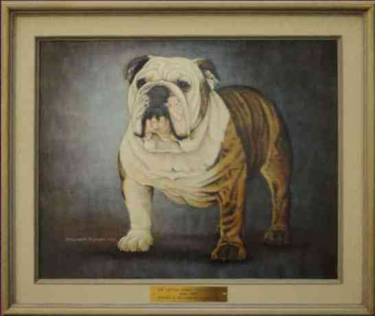 Best of Breed: CH Little Pond's Osage Ollie