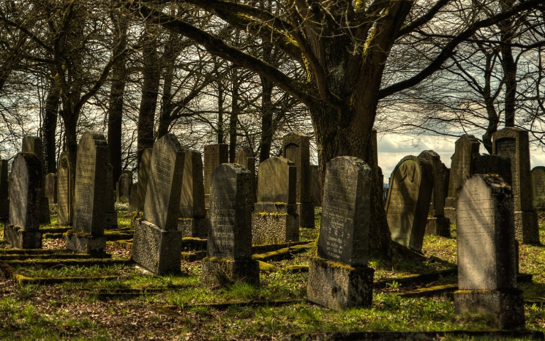 Reflections From Walking In A Cemetery