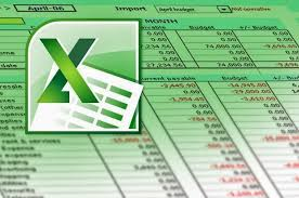 Image result for Télécharger le bulletin de paie excel