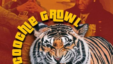 Photo of Music: YN Jay Ft. Rio Da Yung Og – Coochie Growl