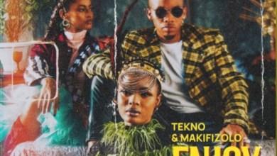 Photo of Music + Video: Tekno Ft. Mafikizolo – Enjoy (Remix)