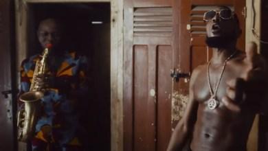 Photo of VIDEO: D'banj Ft. Seun Kuti & Egypt 80 – Stress Free