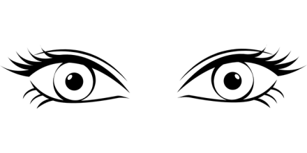 pair of eyes photo