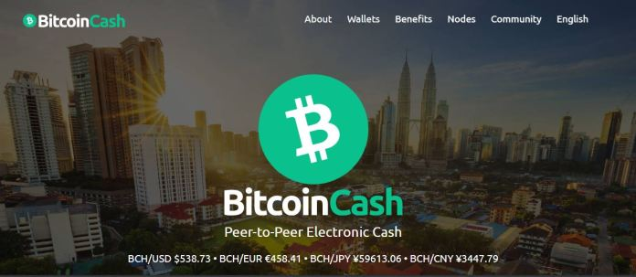Is Bitcoin Cash a Good Investment in 2021?