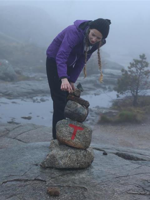 Bergsattel Norwegen