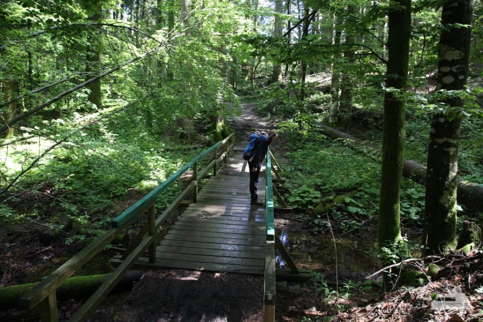 Wandern im Risnjak Nationalpark