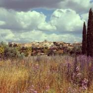 schönes Panorama von Toledo