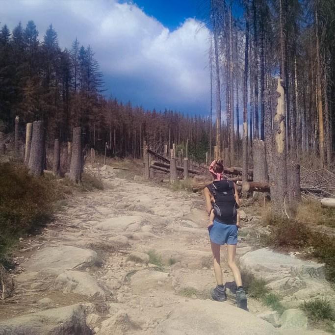 Wandern auf den Brocken