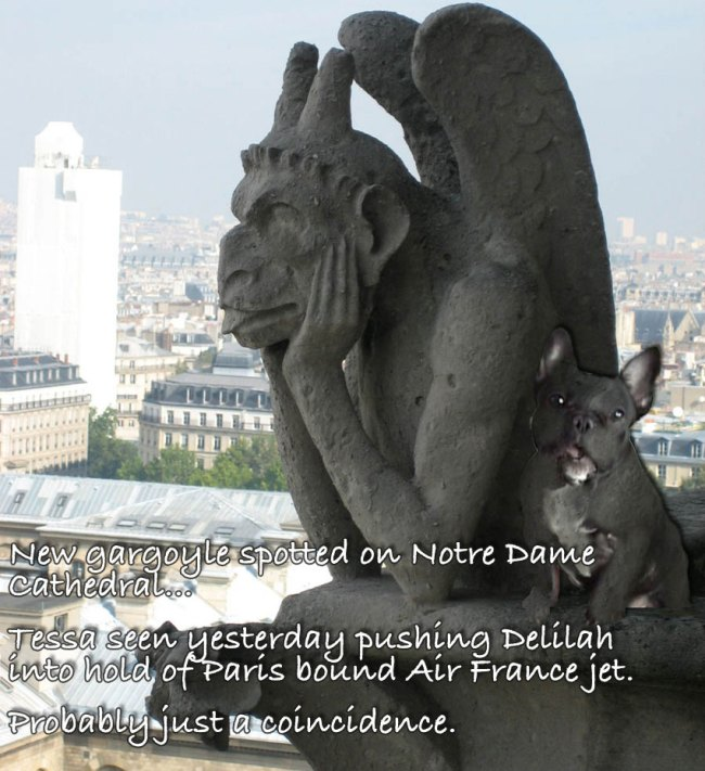 French Bulldog Gargoyle en Paree…