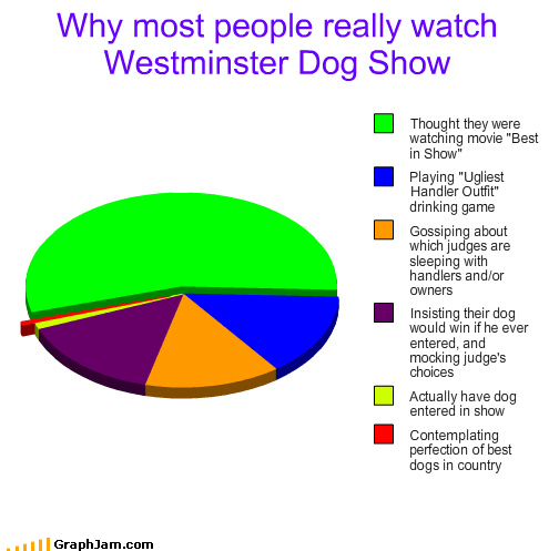 Why People Really Watch Westminster Dog Show Graph Jam
