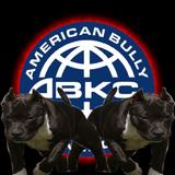 ABKC Logo