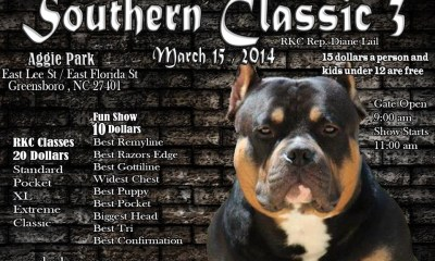 RKC Southern Classic 3 Flyer