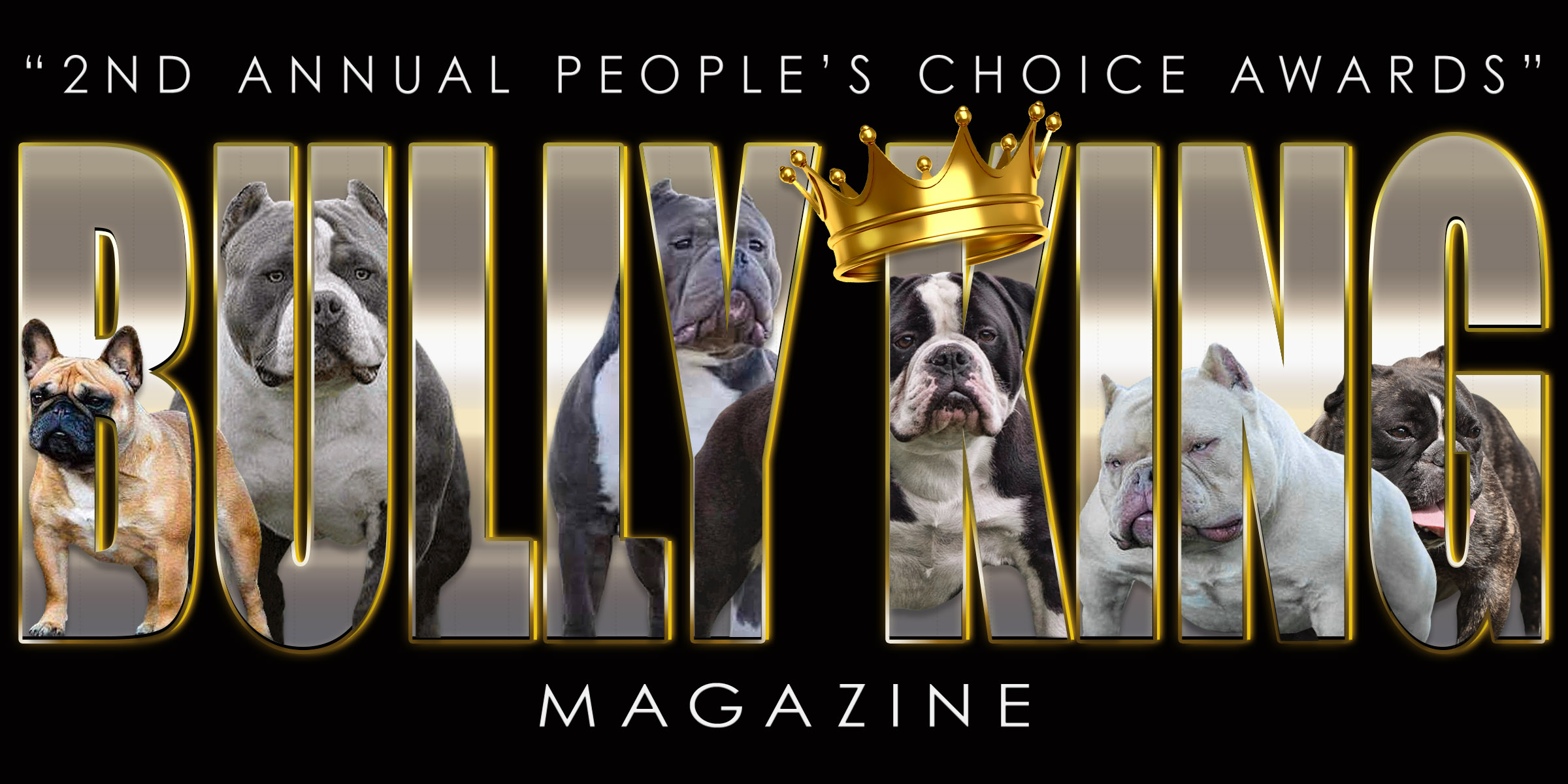 The 2nd Annual People's Choice Award Winners | BULLY KING