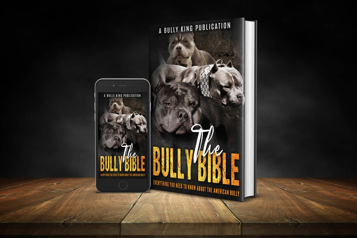 The Bully Bible
