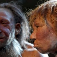 Учените: Неандерталците са ни предали психичните болести? (Ето доказателствата)