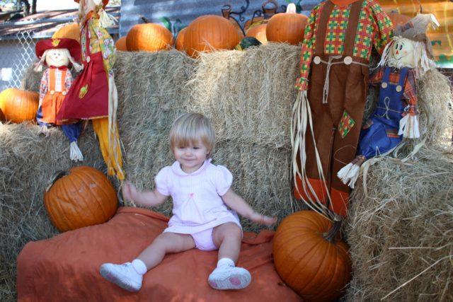 pumpkinpatchphotoop1