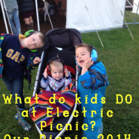 Our Electric Picnic 2014 (Take 2)