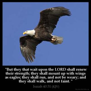 Isaiah_40-31: But they that wait upon the LORD shall renew their strength; they shall mount up with wings as eagles; they shall run, and not be weary; and they shall walk, and not faint