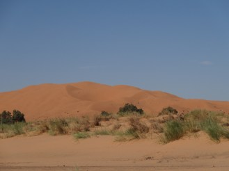 marocco2015_095