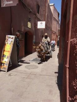 marocco2015_174