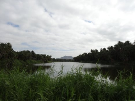 Die Oase San Ignacio