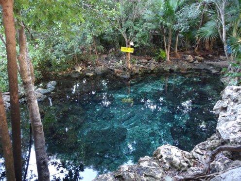 Die vieleicht einzige kostenlose Zenote auf Yucatan