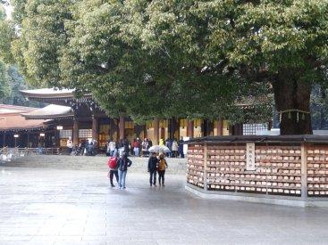Im Hintergrund das Heiligtum - Innen drinnen stand nur ein kleiner Baum