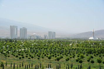In der Stadt gab es große Flächen mit ungenutzter Begrünung - so als ob man die Stadt künstlich vergrößern wollte