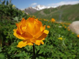Kirgistan_092