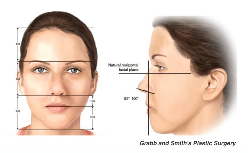 鼻部延長手術