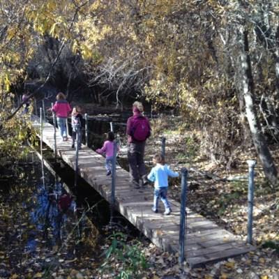 Lupine Loop at Garland Ranch hike