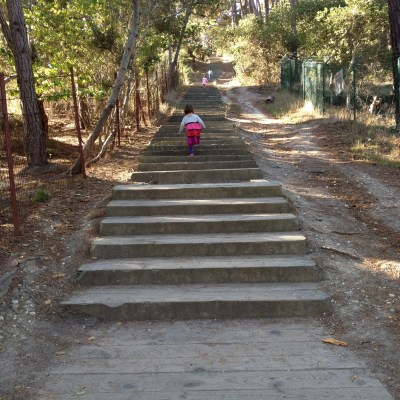 Huckleberry Hill Nature Preserve and the Stairway to Heaven