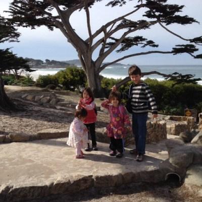 Scenic bluff pathway at Carmel Beach