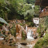 Trip Bandung Part#5, Kampung Daun Resto