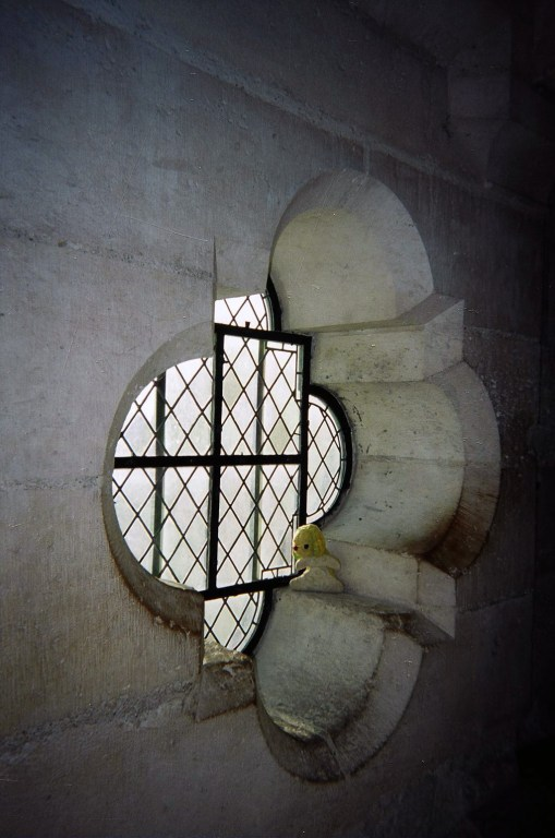 Bun E. Boniface at the entrance to the bell tower at Notre Dame cathedral in Paris. Copyright Cynthia S. Wildridge