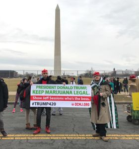 Protesters associated with DMCJ's #Trump420 event settled into the National Mall to listen to the new president's inaugural address and smoke joints provided by the organization. Photo by Nick Neville/BU News Service