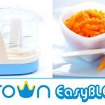 crown easy blend multi mini chopper