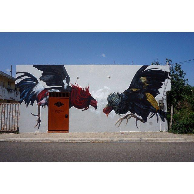 """""""Gallos, Espuelas y Memorias Viejas"""""""